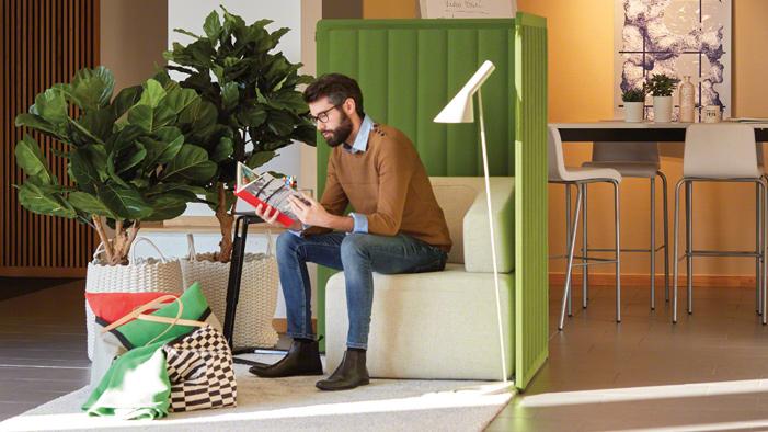 7 prednosti drzanja biljaka u Kancelariji