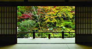"Kolekcija Interface podnih obloga Embodied Beauty™ - inspirirana japanskim konceptom ""Ikigai"""